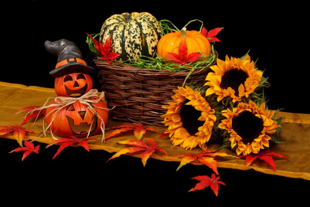 Halloween on a budget with tiny jack-o-lanterns, a basket of gourds, and fall flowers